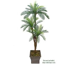 One 6' Cycas Artificial Palm Tree Tripled Heads Plant Plastic Fronds with No Pot