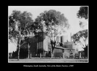 OLD LARGE HISTORIC PHOTO WILMINGTON SOUTH AUSTRALIA THE BUTTER FACTORY c1909