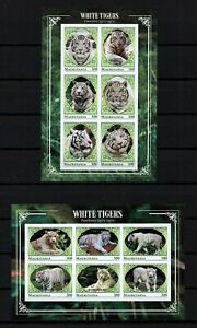 MAURITANIA, YEAR 2018 SET OF 2 IMPERF MINI SHEETS WHITE TIGERS, PRIVATE ISSUE