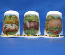 Birchcroft China Thimbles -- Set of Three -- Pigs in Flowers
