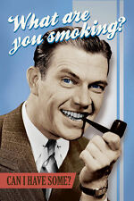 WHAT ARE YOU SMOKING - RETRO POSTER - 24x36 MARIJUANA WEED POT FUNNY 10445