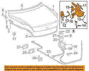 64510-24030 Toyota Hinge assy, luggage compartment door, rh 6451024030, New Genu