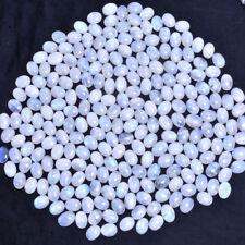 4030 Ct/237 Pcs (20MMx15MM) Natural Untreated Blue Shine Rainbow Moonstone Lot