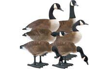 Big Foot B2 Full-Body Fully Flocked Canada Goose Decoys, 6 Pack