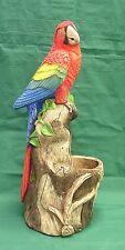 Tropical Bird Macaw Toucan Parrot Cockatoo Vase Latex Fiberglass Mold Concrete