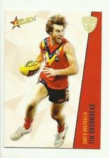 2012 SELECT FUTURE FORCE COLLINGWOOD TIM BROOMHEAD #16 CARD COMMON FREE POST