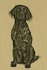 Artified Pets Ink Dog: Munsterlander : Artified Pets Journal/Notebook/Diary.