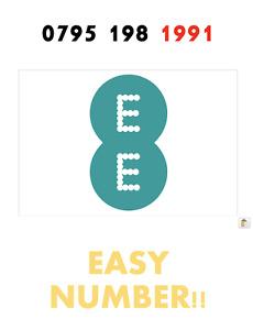 EE Network Trio Sim Card Easy Number Platinum Gold Vip Memorable 079 5198 1991