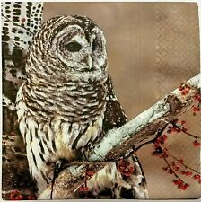 OWL FOREST FALL  2 single LUNCH SIZE paper napkins for decoupage 3-ply