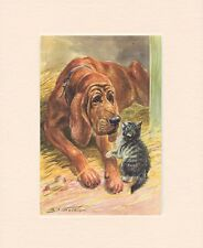 BLOODHOUND AND KITTEN ORIGINAL OLD 1950's DOG ART PRINT READY MOUNTED