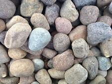 Piedras decorativas pórfido 60/80mm 25 kg sassi colorido decoración jardín