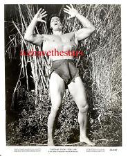 Vintage Gordon Scott Muscle Beefcake Sexy '58 Tarzán Lucha Publicidad Retrato