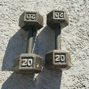 Pair of 20 Lb Dumbbells Set Cast Iron Hex (40 Lbs Pounds Total) Weights Home Gym