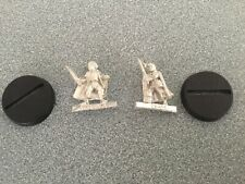 Games Workshop Lord of the Rings Fellowship of the Ring  METAL HOBBIT MERRY SAM