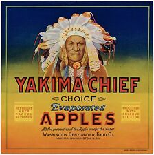 CRATE LABEL VINTAGE INDIAN YAKIMA CHIEF WAR BONNET AMERICAN CHOICE ORIGINAL