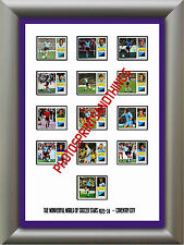 COVENTRY CITY - 1973-74 - REPRO STICKERS A3 POSTER PRINT
