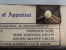 Gemstone Gem Stone Appraisal Genuine Opal Oval White 3.12 Carats COA $325 Oct