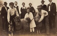 1910s CHILDREN WITH PET SHEEP & FAMILY DOG RPPC Real PHOTO Postcard FAMILY GROUP