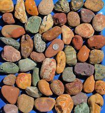 New listing 30 lbs Lot #2 Medium Colorful River Rocks Garden Aquarium Landscape Pond
