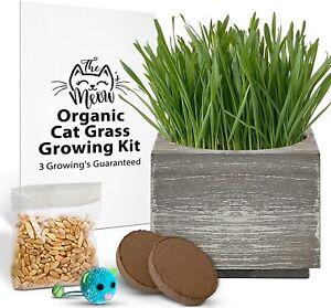 Organic Cat Grass Growing Kit w/ Seed + Soil + Rustic Planter Pet Wheatgrass Set