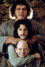 ANDRE THE GIANT WALLACE SHAWN MANDY PATINKIN THE PRINCESS BRIDE 24X36 POSTER