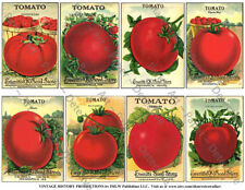 Tomato Seed Packet Reproduction, Vegetable Garden Art Decor, 1 Sticker Sheet