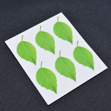 60 Card Paper Stickers Green Leaf Favor Gift Label Decal Graphic Tag Decor DIY