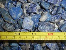 Tumbled Lapis Lazuli Stone Ordinary Grade 0.3 to 15 gram size pcs 40 gram Lot