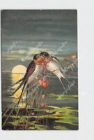 PPC POSTCARD VALENTINE SWALLOWS HEARTS SUNSET OVER WATER EMBOSSED