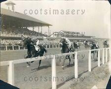 1925 Shuffle Along Horse Wins Inaugural Handicap Hawthorne Track IL Press Photo