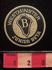 Patch ~ Westminster Junior Beta C69K