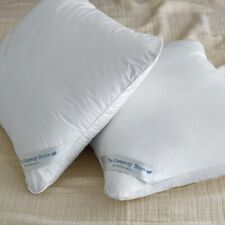 The Company Store - LaCrosse® Down Pillow (KING - White)