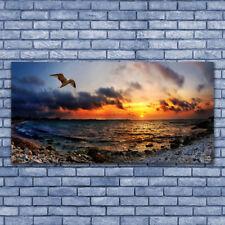 Leinwandbild Kunst-Druck 140x70 Bilder Landschaften Möwe am Strand
