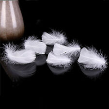 New Style Pretty Feather Short Goose Feather 100pcs DIY Party Decoration