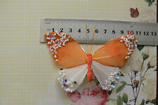 ORANGE & WHITE Feather BUTTERFLY 11x7cm&2.5cm Squeeze Clip-Touch Of Nature