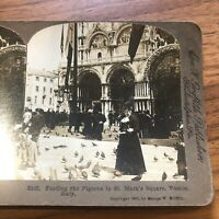 1902 - ITALY, The Pigeons in St Mark's Square, Venice - Stereoview - SV
