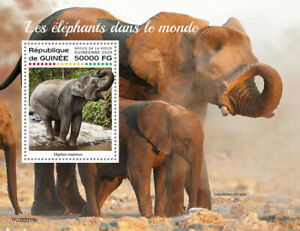 Guinea Wild Animals Stamps 2020 MNH Elephants African Bush Elephant Fauna 1v S/S