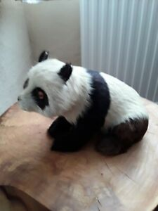 Vintage Hand Made Panda Bear