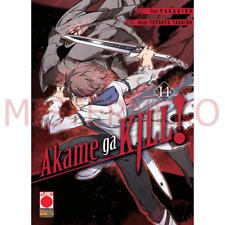 Hot Fabric Poster Akame Ga Kill Anime 36x24 30x20 40x27inch Z1053