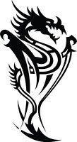 Dragon Tribal Dragons Car Decal Window Sticker TRB005