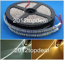 Tira de LED 3528 240 Led/metro DC12V Alto Brillo 3528 Flexible LED luz 5m