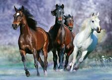 More details for bob langrish : running horses - giant poster 140cm x 100cm new and sealed
