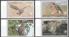Aitutaki 2019 birds of prey owls klb MNH michel set 1063-66 95 euro