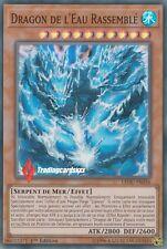 ♦Yu-Gi-Oh!♦ Dragon de l'Eau Rassemblé (Liaison) : LEDU-FR036 -VF/Super Rare-