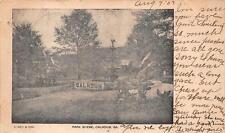 PARK SCENE CALHOUN GEORGIA POSTCARD 1907
