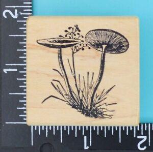 Wild Mushrooms 09112G Magenta Wood Mounted Rubber Stamp