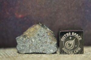NWA 13741 LL3-5 Primitive Chondrite Meteorite 0.89 gram complete slice (1 of 8)