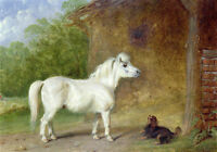 Huge Oil painting white horse with black dog in village landscape hand painted