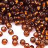 Perles de Rocailles en verre Trou Argenté 4mm Marron 20g (6/0)