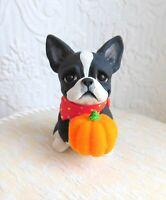 Boston Terrier Fuzzy Orange Pumpkin Sculpture dog collectible Furever Clay